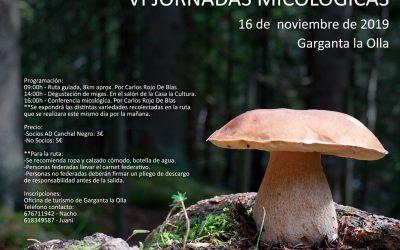 Jornadas Micológicas en Garganta la olla